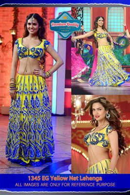 image of Elli Avram Bollywood Replica Designer Saree