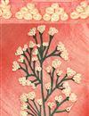pic of Digital Printed Saree with Crop Top