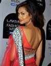 photo of Grey Net-Georgette Esha Gupta Replica Saree-1317