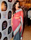 image of Grey Net-Georgette Esha Gupta Replica Saree-1317
