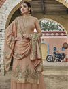 image of Chikoo Color Chinon Fabric Function Wear Embroidered Palazzo Suit