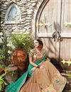 photo of Embroidered Teal And Chikoo Net Function Wear Saree