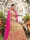 photo of Net And Chiffon Designer Saree With Embroidery Designs In Pink And Cream