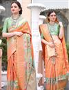 image of Wedding Special Traditional Art Silk Jacquard Work Chikoo Color Function Wear Saree