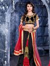 image of Lovely Black Color Net Chaniya Choli