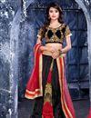image of Lovely Black Color Net Chaniya Choli