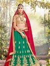 image of Navratri Special Net Fabric Embroidered Wedding Wear Lehenga Choli