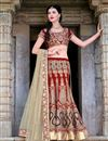 image of Red Wedding Bridal Silk Lehenga Choli