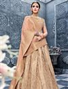 image of Ready To Ship Designer Banarasi Silk Chikoo Color Embellished Lehenga Choli