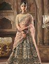 image of Dark Green Velvet Fabric Function Wear Designer Embroidered Lehenga Choli