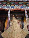 picture of Net Fabric Designer Function Wear Beige Embroidered Floor Length Anarkali Dress