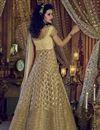 photo of Embellished Chikoo Color Net Designer Long Anarkali Dress With Pants