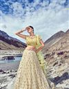 image of Eid Special Net Fabric Beige Stylishly Embroidered Party Wear Lehenga Choli