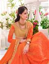 photo of Orange Half-Half Saree with Banglori Blouse