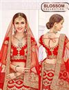 photo of Glamorous Red Color Festive Wear 3 Piece Lehenga Choli In Net Fabric