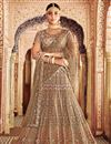 image of Net Fabric Function Wear Dark Beige Fancy Traditional Embellished Lehenga Choli
