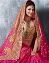photo of Urvashi Rautela Wedding Wear Pink Saree-9006