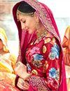 photo of Pink Fancy Wedding Wear Chiffon Saree With Lace Border