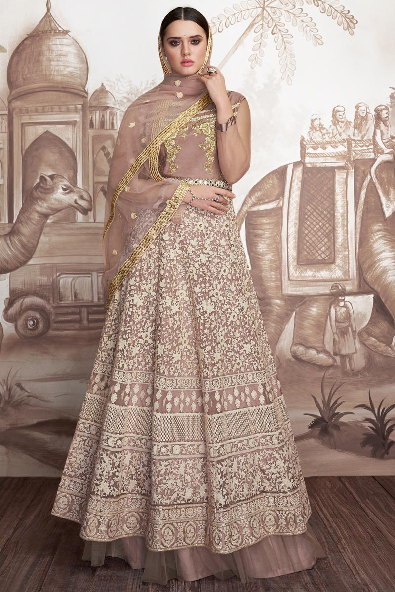 Designer Chikoo Color Georgette And Net Fabric Embroidered Floor Length Anarkali Suit