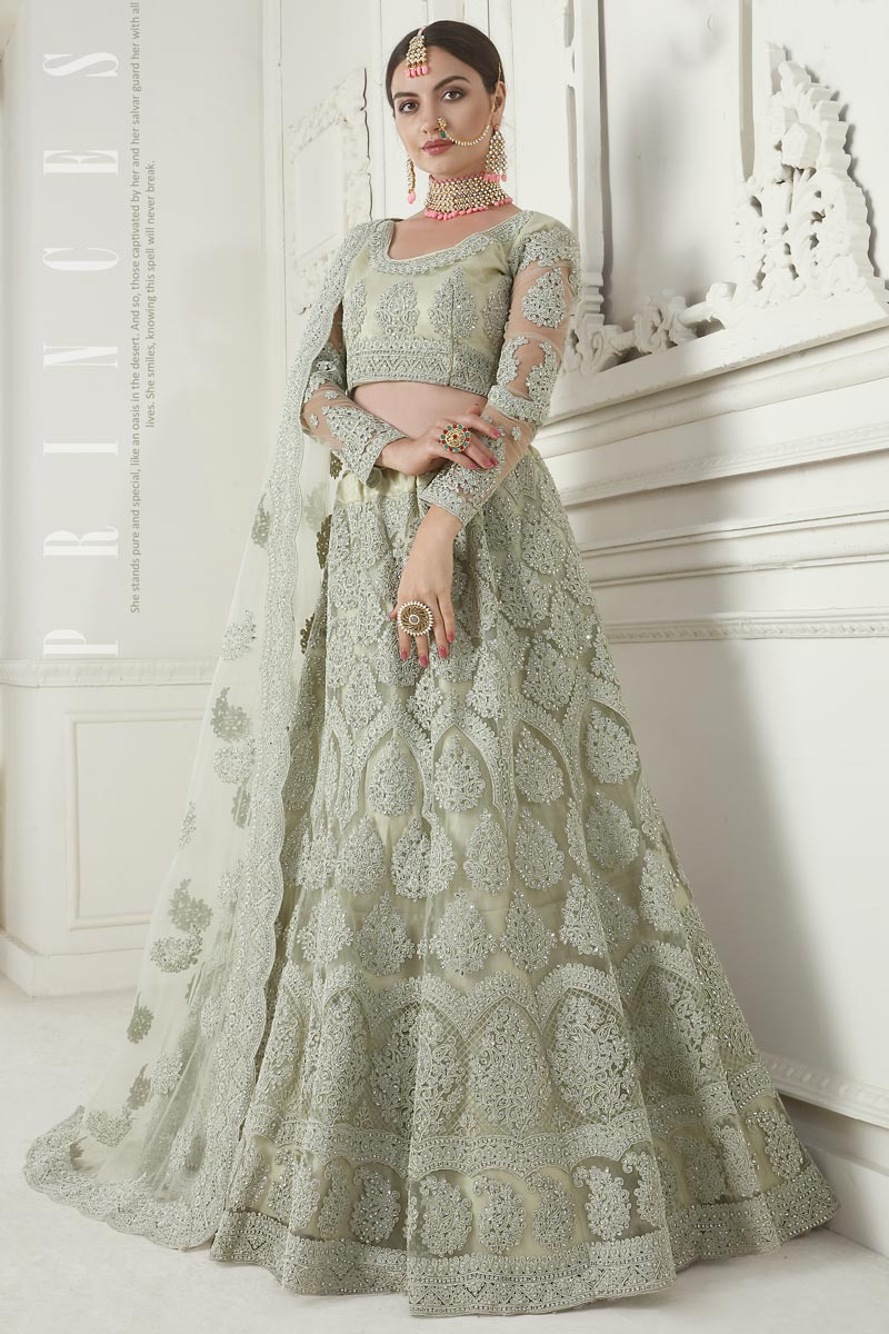 Net Fabric Function Wear Designer Embroidered Beige Lehenga